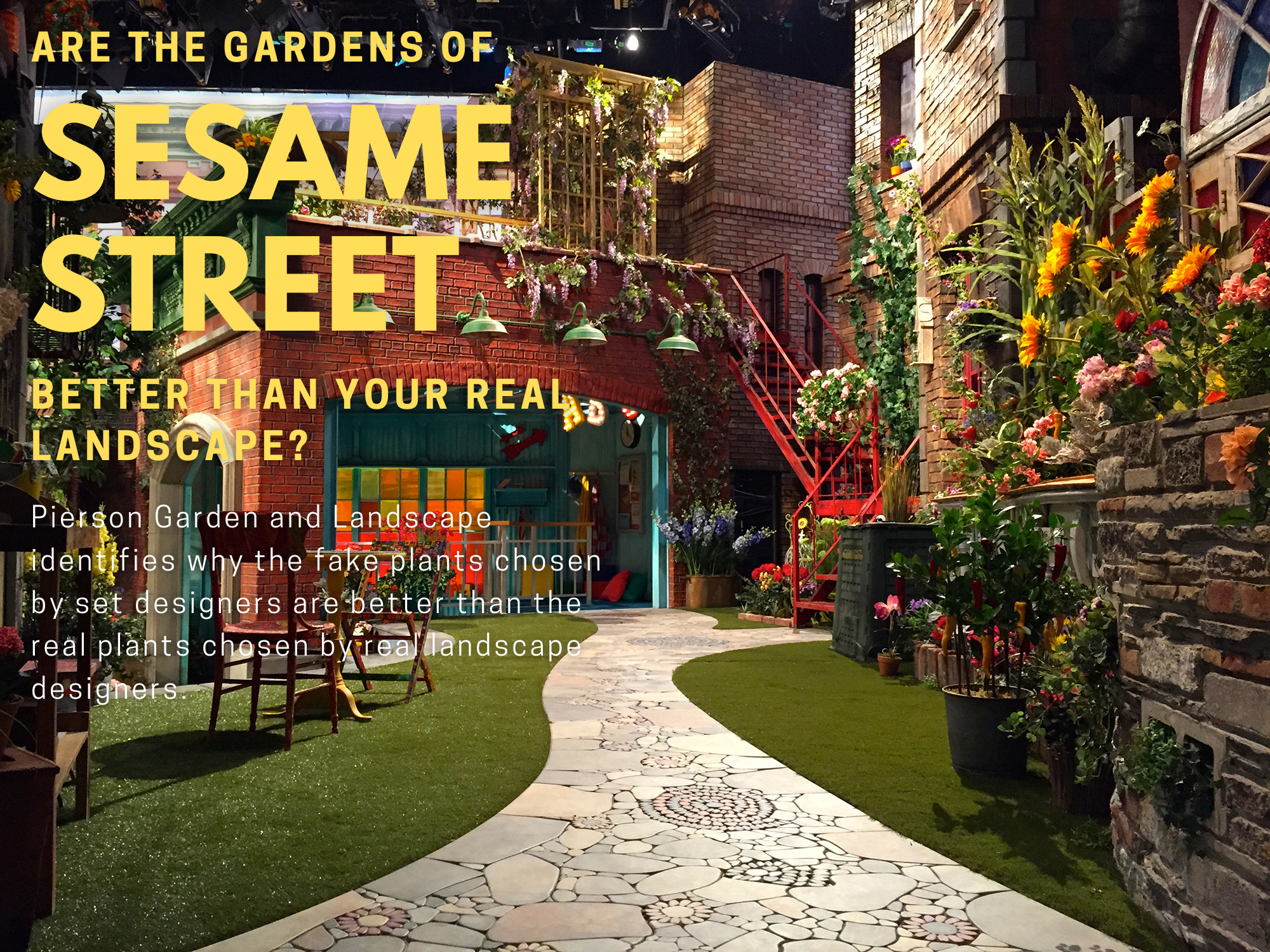 Pierson Garden and Landscape identifies why the fake plants of Sesame Street are better than your real landscape plants